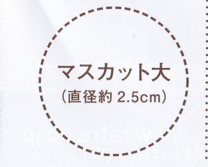 ラフラ / バームオレンジ(ブラック)の使い方(付属の説明書画像)1