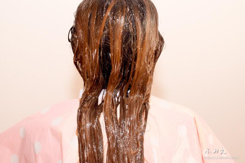 レブロン レブロニッシモ カラーリムーバー を髪全体に塗り終わった様子